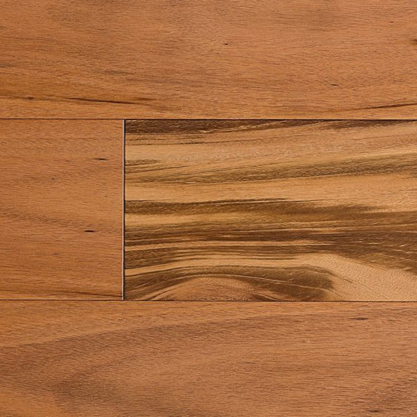 Valor Tigerwood Floor Sample